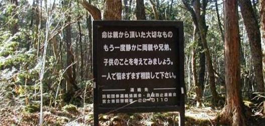 lugar assustador floresta de aokigahara no japão