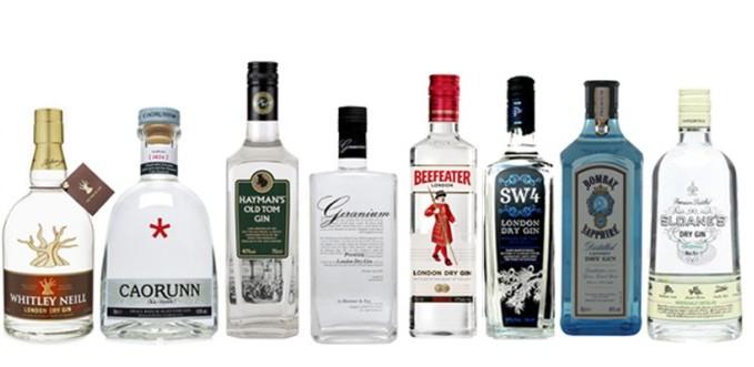 bebida pouco calórica gin